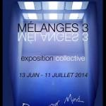 MELANGES 3 - Galérie L'Entrepôte - Monaco (June-July 2014)